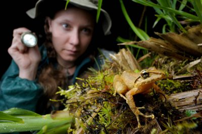 Photo: Searching for frogs along the cloud forest reserve near Mindo, Ecuador.