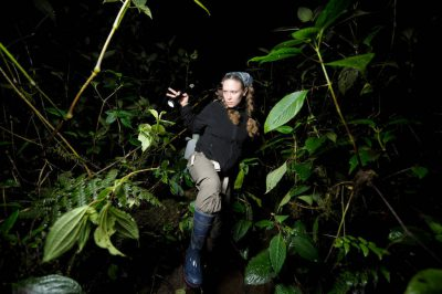 Photo: A team searches for amphibians in a cloud forest reserve near Mindo, Ecuador.