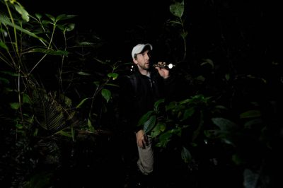 Photo: A biologist searches for amphibians in a cloud forest reserve near Mindo, Ecuador.