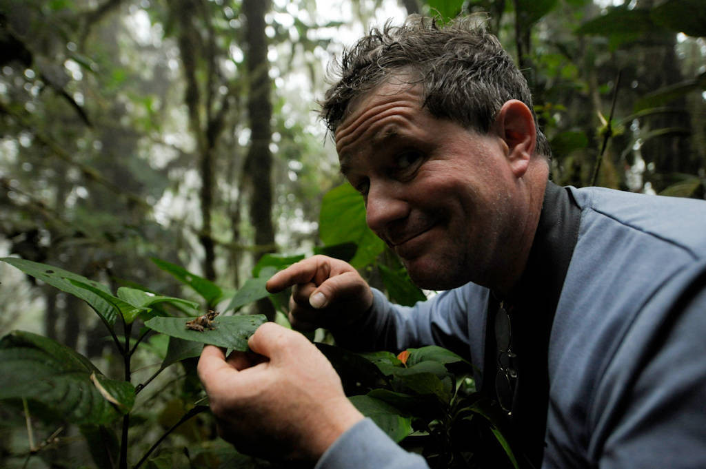 Joel Sartore with a long-snouted robber frog (Pristimantis appendiculatus) in the cloud forest reserve near Mindo, Ecuador.