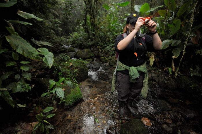 Photo: A woman takes a picture in the cloud forest reserve of Reserva Las Gralarias, near Mindo, Ecuador.