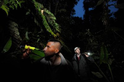 Photo: Two men search for amphibians in a cloud forest reserve near Mindo, Ecuador.
