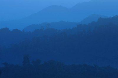 Photo: Scenics of the cloud forest near Mindo, Ecuador.