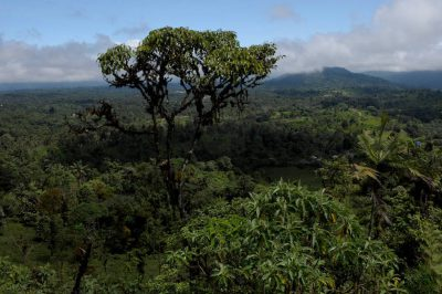 Photo: Near Mindo, where agricultural use meets the cloud forest, Ecuador.