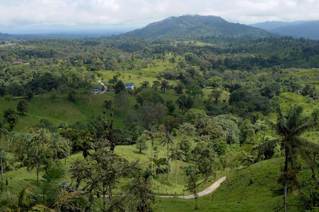 Photo: Near Mindo, where agricultural use meets the cloud forest, Ecuador.