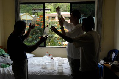 Photo: Three scientists examine the previous evening's collection of amphibians in their hotel room in Limon, Ecuador.