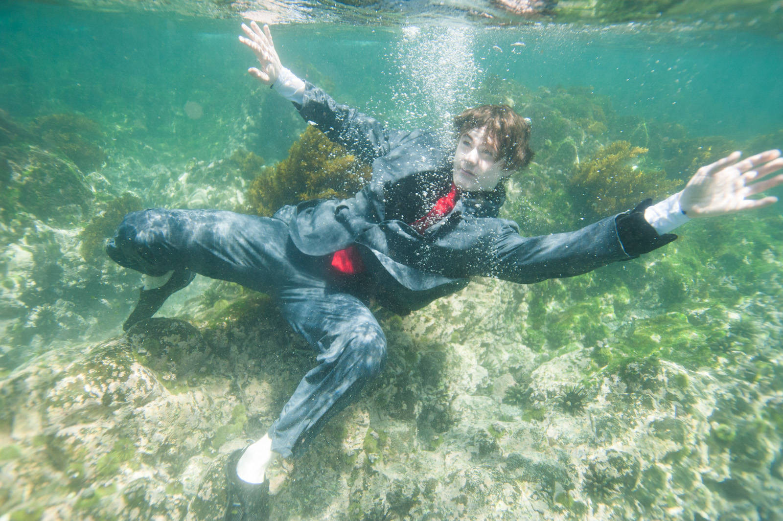 Photo: A teenage boy swims in his business suit along the coast of Fernandina Island in Galapagos National Park.