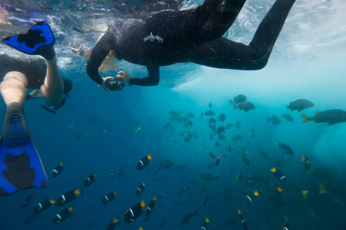 Photo: Tourists and ocean fish by Floreana Island in Galapagos National Park.