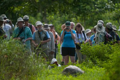 Tourists watch a sleeping Galapagos giant tortoise (Chelonoidis vicina) on Santa Cruz Island.