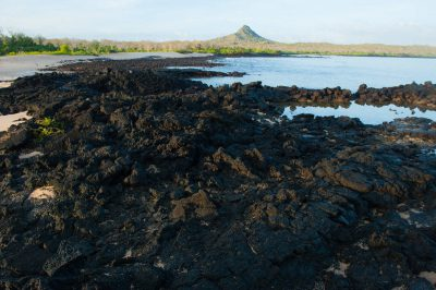 Photo: Since the Galapagos are volcanic, lava flows can be found on each island, including this one on Santa Cruz Island, Galapagos National Park.