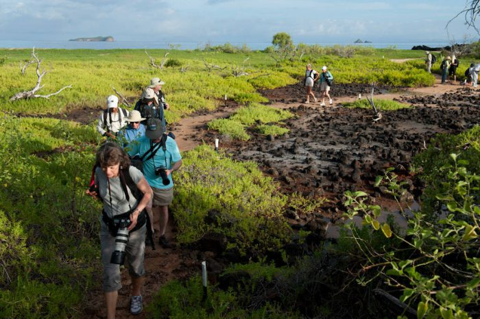Photo: Tourists hike along the shore of Santa Cruz Island, Galapagos National Park.