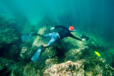 Photo: A man snorkels along the coast of Tower Island in Galapagos National Park.