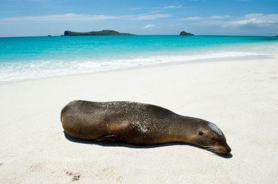 Photo: Espanola Island in Galapagos National Park.