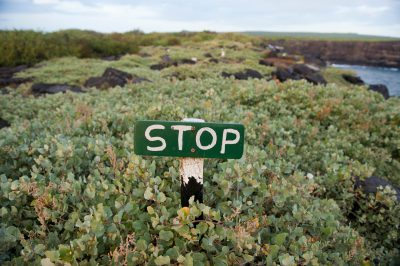 "Photo: A ""stop"" sign protects plants and wildlife on Espanola Island in the Galapagos."