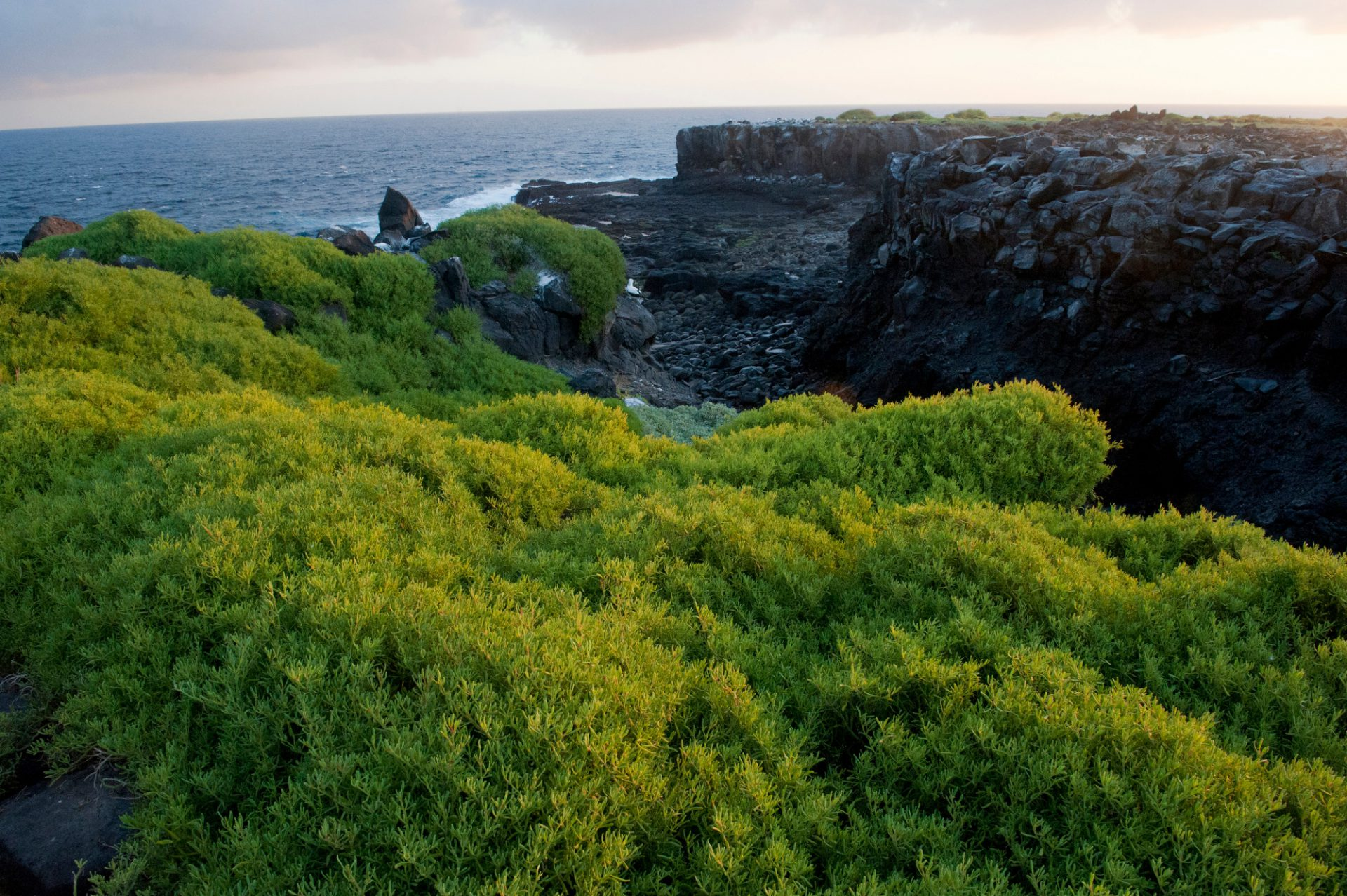 Photo: A scenic of Espanola Island in Galapagos National Park.