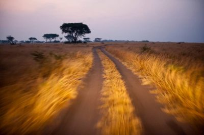 Photo: Main roadway, Ishasha Section, Queen Elizabeth National Park, Uganda.