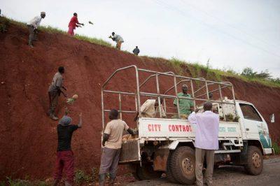 Photo: Men harvesting pineapples in Uganda, Africa.