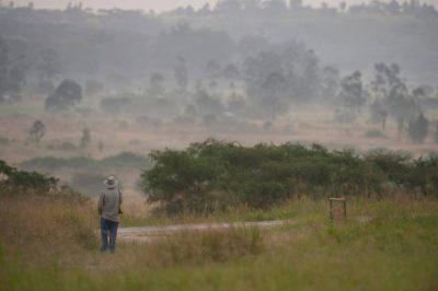 Photo: A man admires the scenery in Queen Elizabeth National Park in Uganda, Africa.
