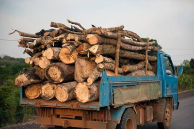 Photo: A truck full of freshly cut logs in Uganda, Africa.