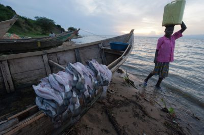 Photo: Locals catch Nile perch and carry water from Lake Albert.