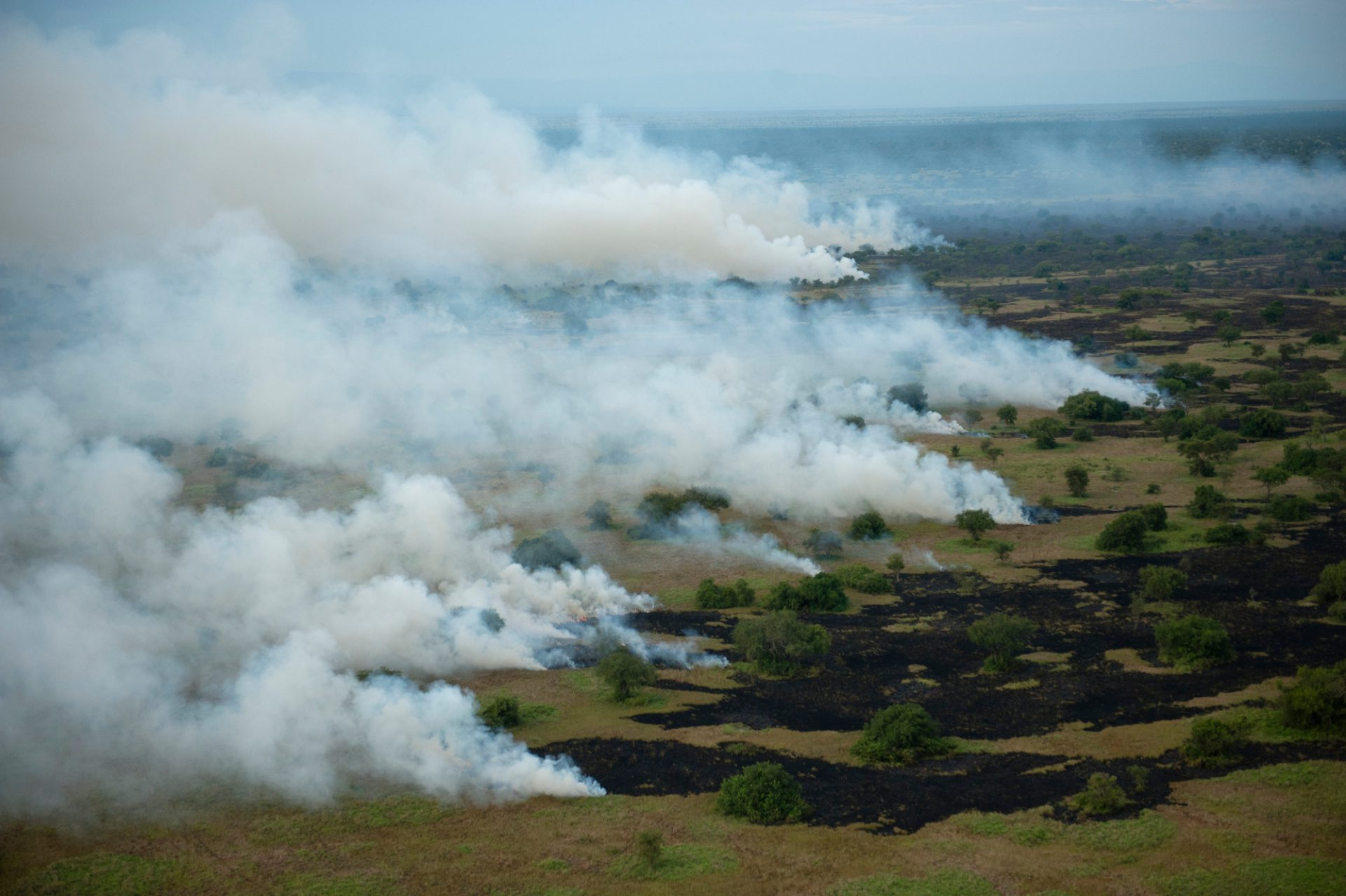 Photo: A controlled burn in the Semliki Wildlife Reserve.