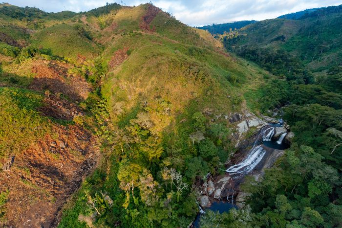 Photo: Clear-cuts and remnants of rain forest flank the Vanduzi waterfall, on the east side of Mount Gorongosa.