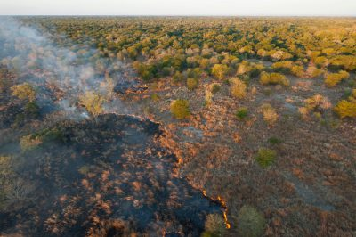 Photo: On the west side of the original Gorongosa park a brush fire is set by poachers to move game.