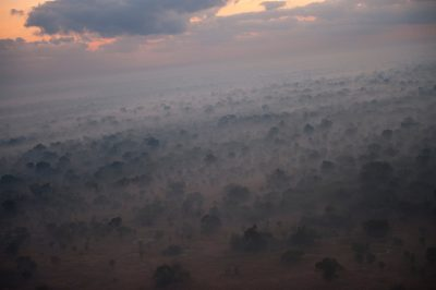 Photo: A thick layer of fog and smoke covers the ground in Gorongosa National Park in Mozambique, Africa.