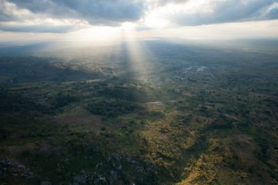 Photo: Aerials inside the buffer zone, in the foothills of the Mt. Gorongosa Range in Mozambique, Africa.