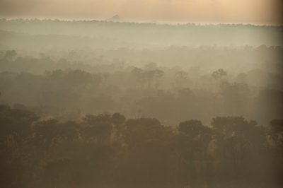 Photo: Smoke at dawn inside the main park of Gorongosa National Park in Mozambique, Africa.