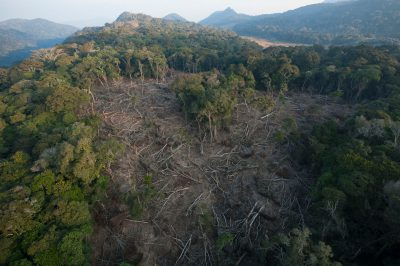 Photo: Clearcuts for slash and burn agriculture within the Mt. Gorongosa range of Gorongosa National Park in Mozambique, Africa.