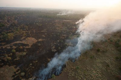 Photo: Human set fires in the main park and the buffer zone of Gorongosa National Park in Mozambique, Africa.