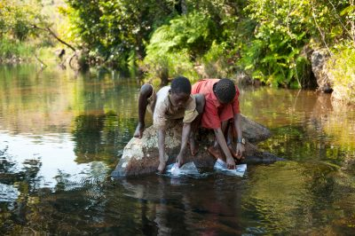 Photo: Two boys search for specimens for the bioblitz in Gorongosa National Park, Mozambique, Africa.
