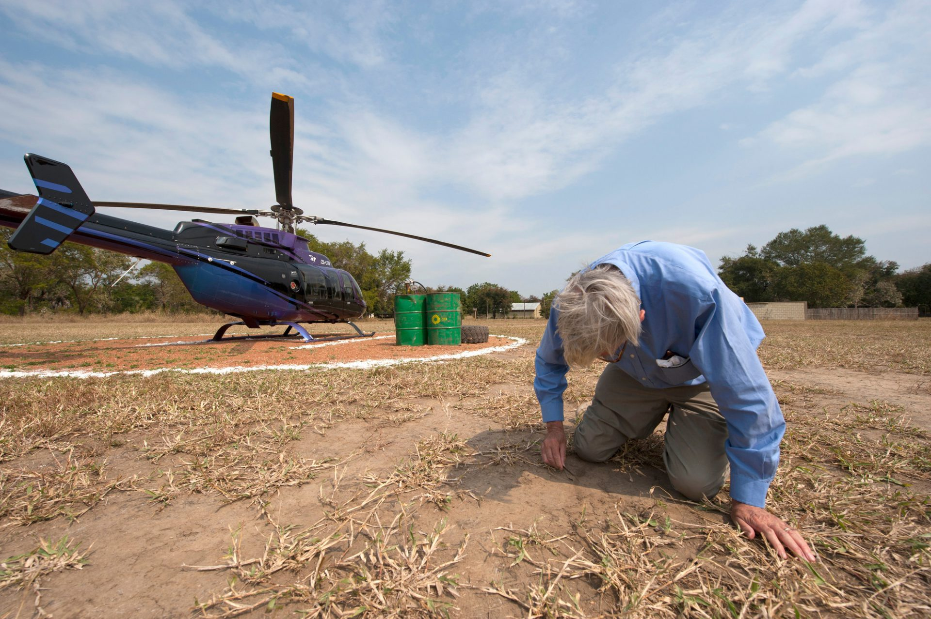 Photo: Dr. Edward O. Wilson examines an insect in Gorongosa National Park, Mozambique, Africa.