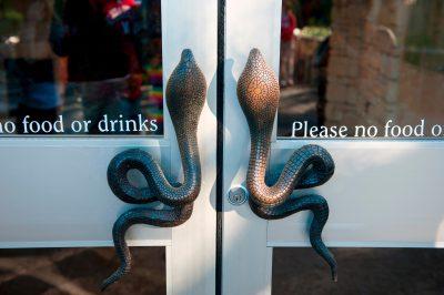 Photo: Cobra Snake door handles at the Fort Worth Zoo.