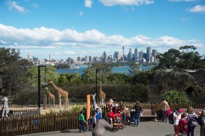 Photo: A scene at Australia's Taronga Zoo.