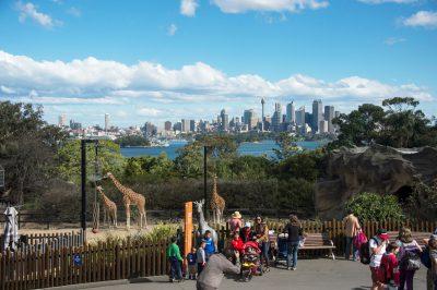 Photo: A scene at Australia's Taronga Zoo.