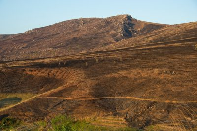 Photo: The north central Madagascar highlands, where annual, landscape-wide burning is the norm.