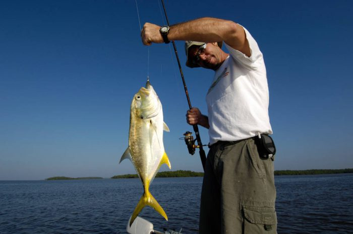 Photo: A fisherman (name available upon request) holds up his catch, a Jack Cravelle fish, in the 10,000 Islands area of Everglades National Park, Florida near Naples.