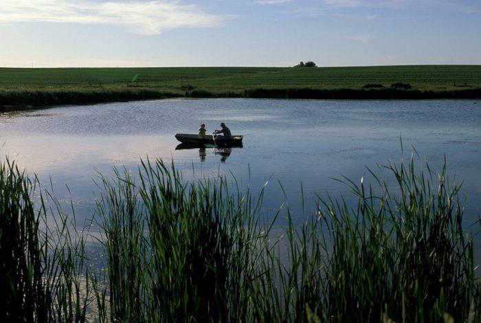 Photo: Cole Sartore and his grandfather fish in a farm pond near Lincoln, NE.