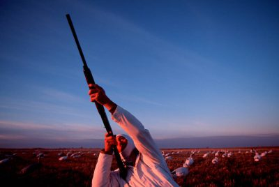 Photo: A hunter at the edge of J. Clark Salyer NWR in North Dakota takes aim at snow geese overhead.