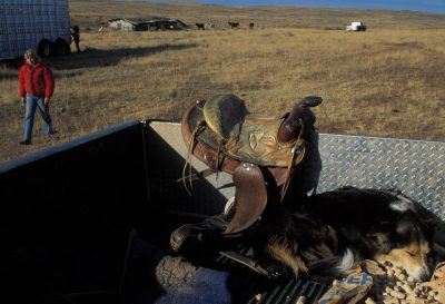 Photo: A dog sleeps near a saddle at the Charles M. Russel National Wildlife Refuge in Montana.