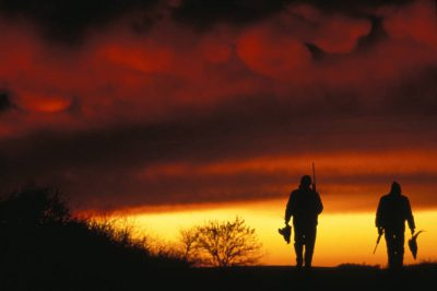Photo: Hunters make their way back home after a day of shooting pheasants in western Nebraska.