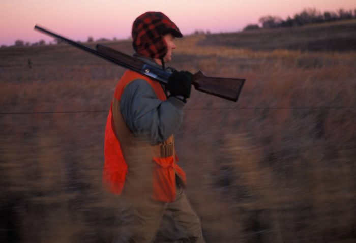 Photo: Hunters participate in an organized pheasant hunt in Broken Bow, Nebraska.