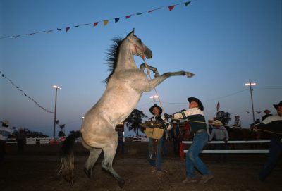 Photo: Scene from the wild horse races at Nebraska's Big Rodeo in Burwell.
