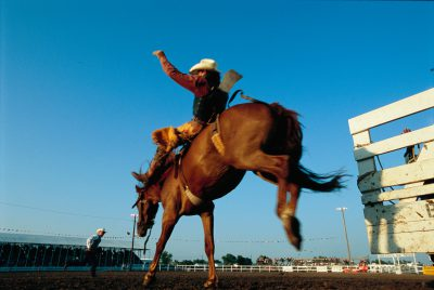 Photo: A cowboy riding a bucking bronco during the Burwell Rodeo in Burwell, Nebraska.
