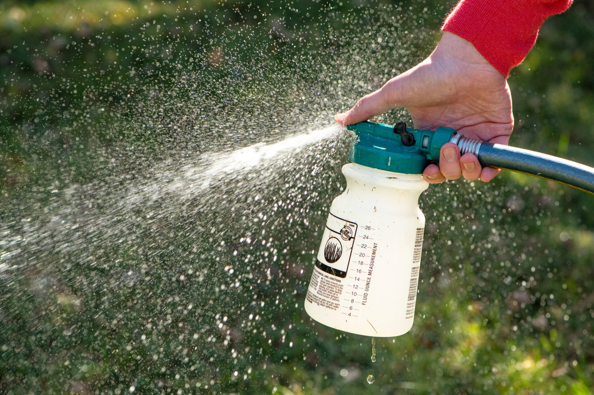 Photo: Pesticides are sprayed from a bottle.