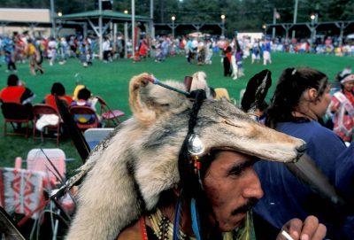 Photo: Bob Danielson, a member of the Ojibwa tribe, wears a wolf pelt at a Minnesota pow wow.